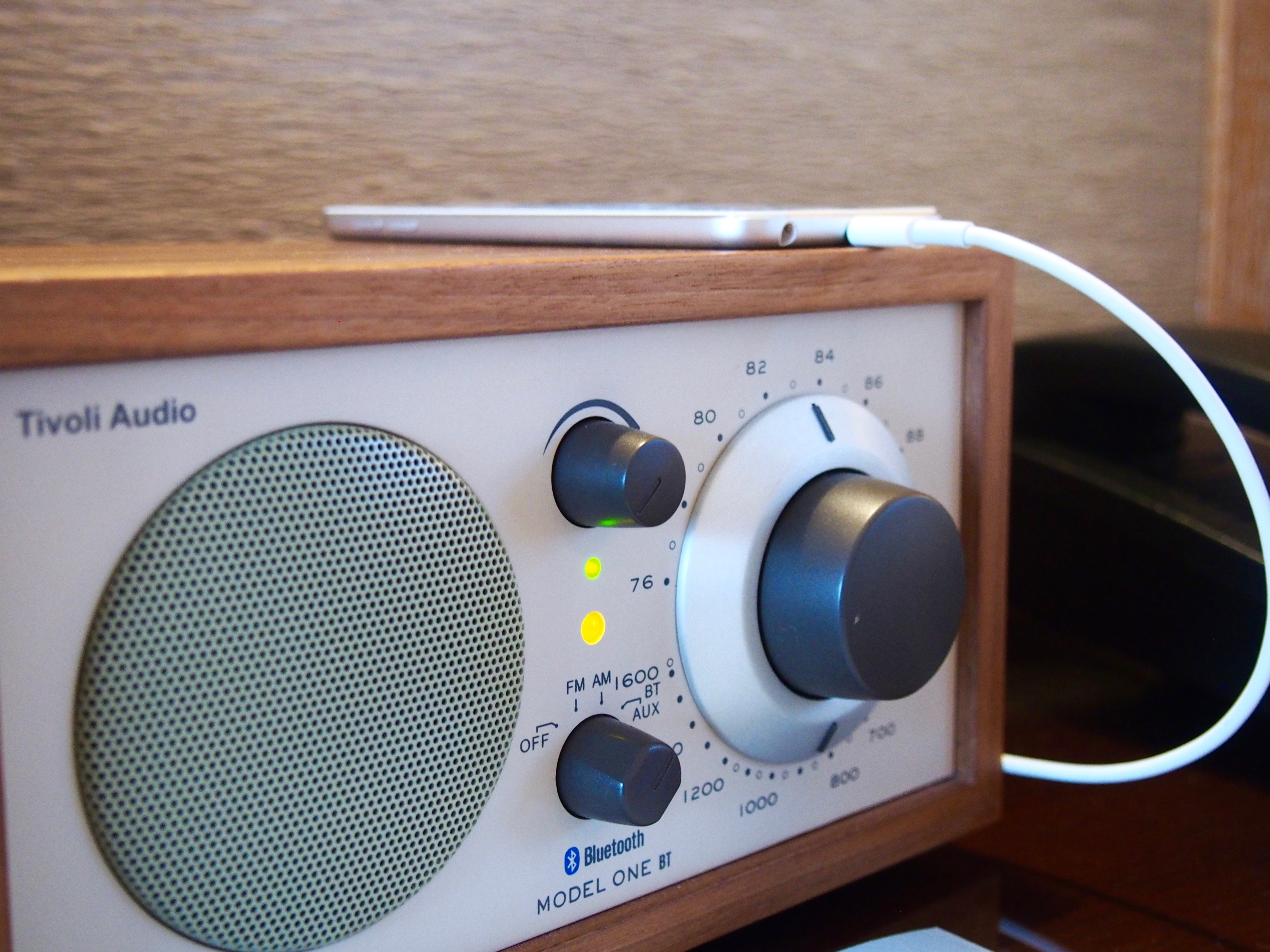 The radio with bluetooth capability and pre loaded jazz playlists on the iPod